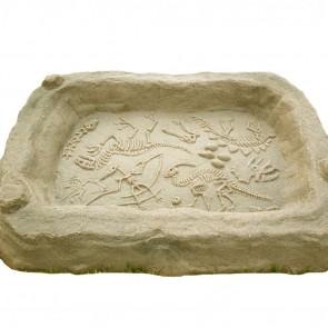 Digasaurus Sandbox